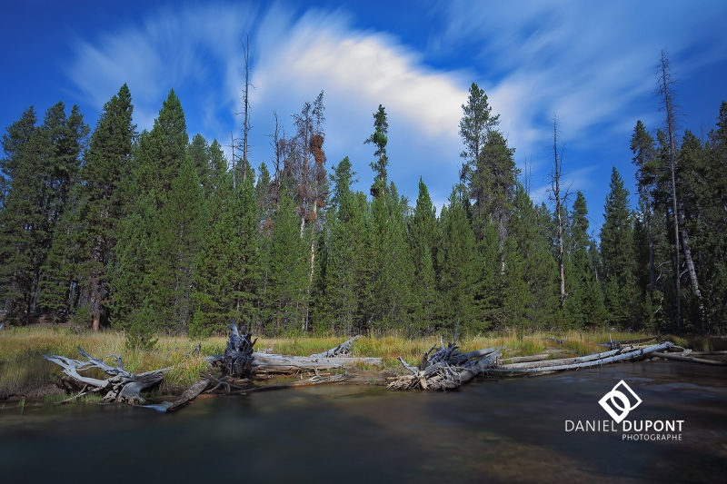 Parc national de Yellowstone ©