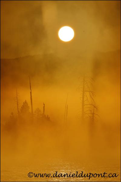 Madison_river_Yellowstone-14-0952