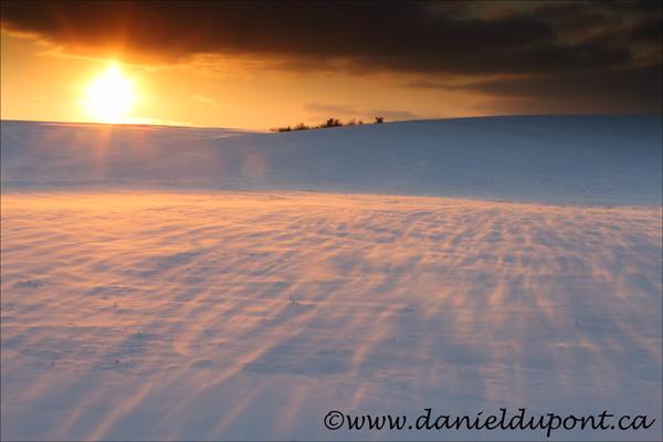 Couché_soleil_hiver_DPP-14-5755