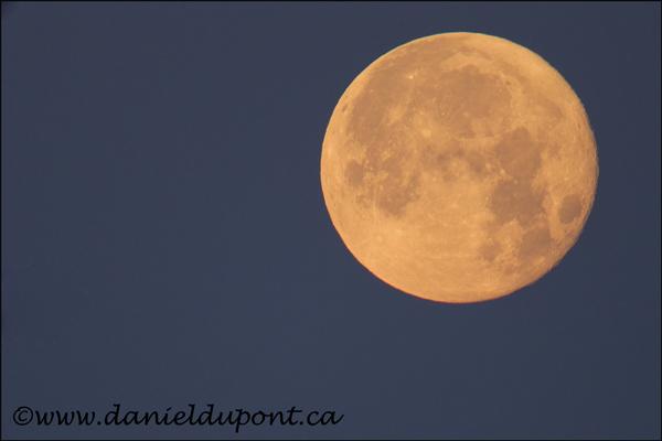 Lune-4-12-6898