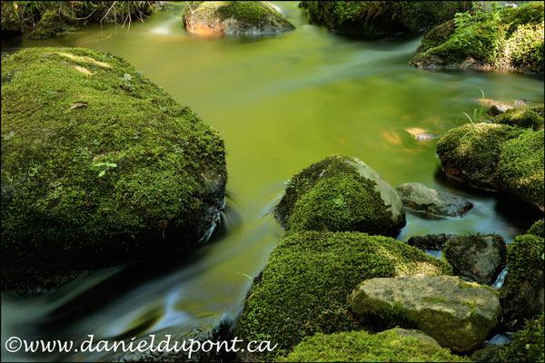 Ruisseau_Portneuf-128--3169