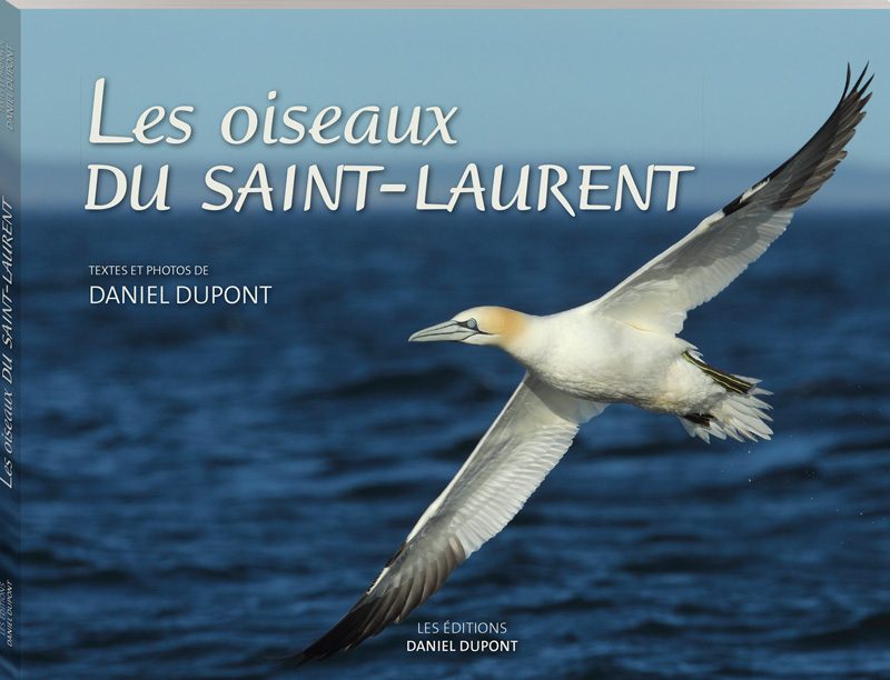 OiseauxStLaurent_Couvert