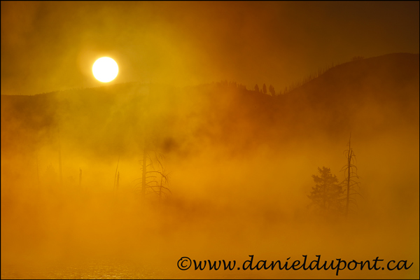 Yellowstone_levé_soleil_brume-14-0936