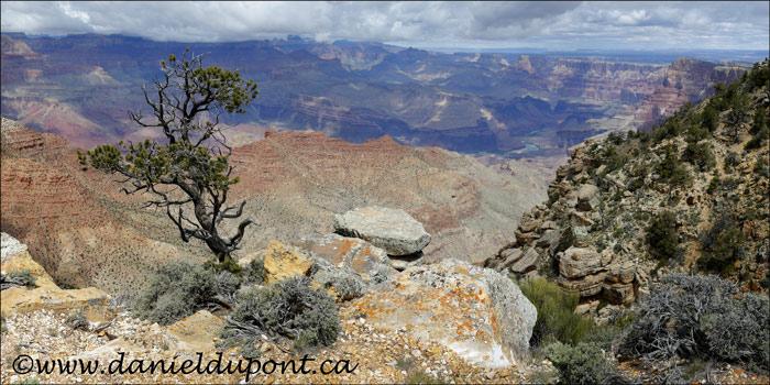 Pan_Grand_Canyon-15-1733