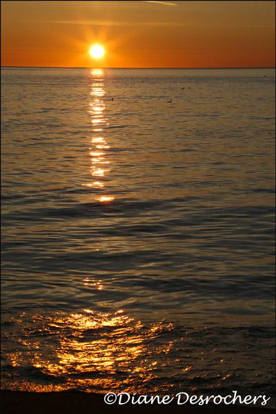 Levé-de-soleil---2016-06-02---9034