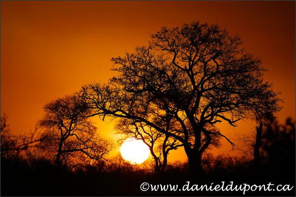 coucher_soleil-16-7367
