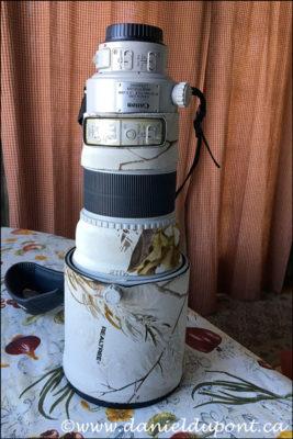 Objectif Canon 300mm f/2,8 II IS USM usagé à vendre