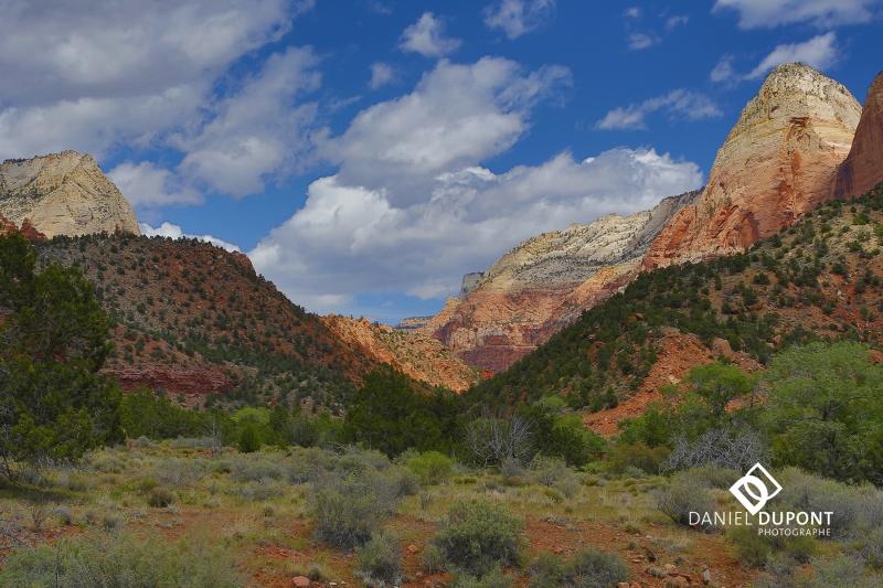 Parc national de Zion ©